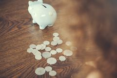 Baby hand coins with piggy bank. In home royalty free stock photo