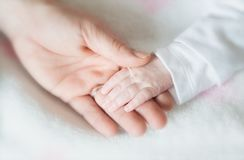 Baby hand detail Royalty Free Stock Photo