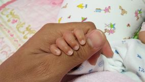 Baby hand with father& x27;s hand. Finger of life Royalty Free Stock Photo
