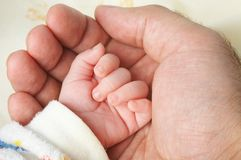 Baby hand in father's palm Stock Image