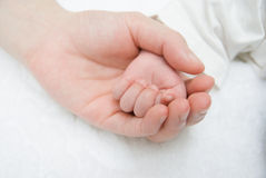 Baby hand on a female hand Royalty Free Stock Images