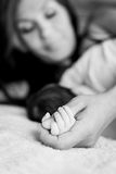 Baby hand gently holding. Adult's finger ( black and white Stock Photo