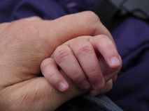 Baby hand gripping an adult hand by the thumb royalty free stock image