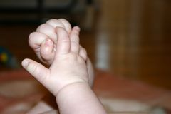 Baby hands. Baby grasping hands Stock Image