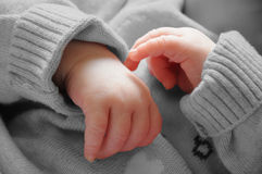 Baby hands. On a black and white background royalty free stock images