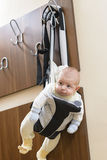 Baby in a hanger Stock Image