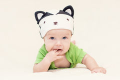 Baby in the hat skunk Stock Photo