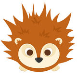 Baby Hedgehog. Cute little brown hedgehog with big eyes and little feet Stock Photography