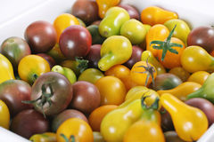 Baby heirloom tomatoes from the garden Royalty Free Stock Image