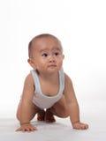 Baby het Kruipen Royalty-vrije Stock Afbeeldingen