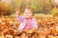 Baby het spelen met de herfstbladeren Royalty-vrije Stock Fotografie
