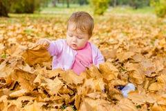Baby het spelen met de herfstbladeren Royalty-vrije Stock Afbeeldingen