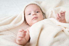 Baby hidden in blanket Royalty Free Stock Images
