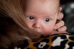 Baby is hiding behind mother. Cute baby is hiding behind mother Royalty Free Stock Photo