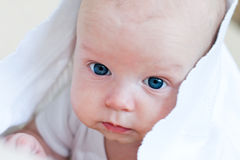 Baby is hiding under the white blanket Royalty Free Stock Image