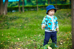 Baby hiking Royalty Free Stock Images