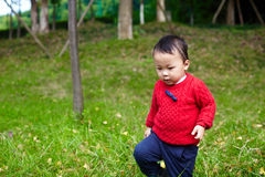 Baby hiking Stock Images