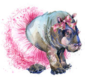 Baby hippo in fashion skirt T-shirt graphics. Stock Photo