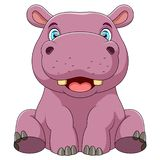 A baby hippo vector illustration