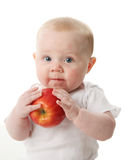 Baby holding an apple Stock Photos