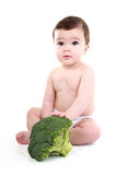 Baby holding broccoli Royalty Free Stock Images