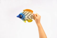 Baby holding fish Royalty Free Stock Photos