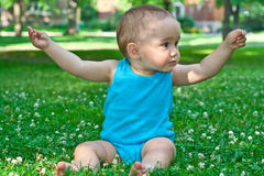 Baby holding a flower Stock Image