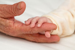 Baby Holding Great Grandma's Finger Royalty Free Stock Photography