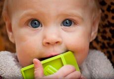 Baby holding a green block facing camera Stock Photos