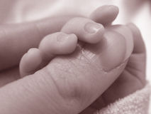 Baby holding ladies thumb Stock Image