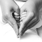 Baby holding mother hand. Baby holding mother finger and together form a heart shape by hand royalty free stock photo