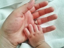 Baby holding mothers hand royalty free stock photos