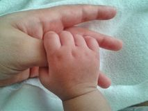 Baby holding mothers thumb stock images