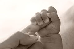 Baby holding parent hand Stock Photography