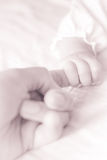 A baby holding parent index finger Royalty Free Stock Image