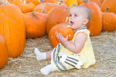 Baby Holding Pumpkin Royalty Free Stock Photo