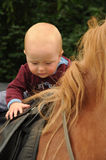 Baby on horse Royalty Free Stock Photos