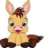 Baby horse cartoon. Illustration-baby pony is very cute Stock Photo