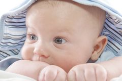Baby im blauen Hoodie Stockbilder