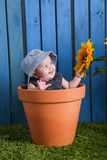 Baby im Blumentopf Stockfoto