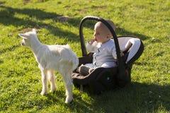 Baby im carseat und kleine Ziege auf Gras Lizenzfreie Stockfotos
