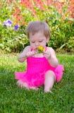 Baby im Garten mit gelber Blume Lizenzfreie Stockbilder