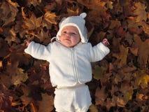 Baby im Herbstlaub Lizenzfreies Stockfoto