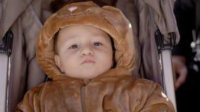 Baby im Kostüm liegt im Wagen im Park stock footage