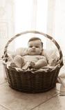 Baby im Moses-Korb stockbilder