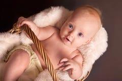 Baby im Weidenkorb Stockbild