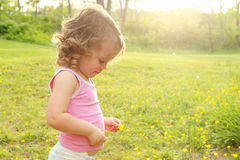 Baby In A Meadow Stock Photos