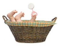 Free Baby In Basket Royalty Free Stock Photo - 4618965