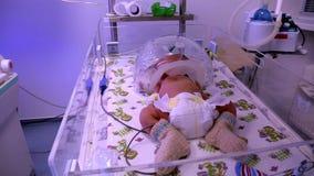 Baby in an incubator. Neonatal Medicine. stock video footage