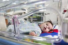 Baby through an incubator Stock Photography